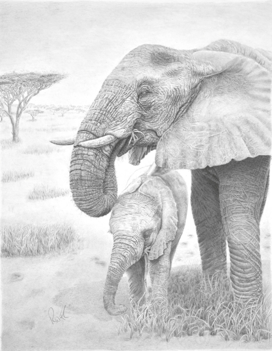 Savannah Serenity - mother and calf elephant small